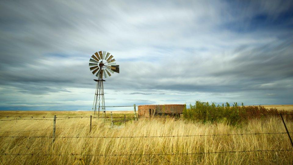 Ekonomika ekosystemu: jak poruszać się wwęźle wodno-rolniczo-energetycznym