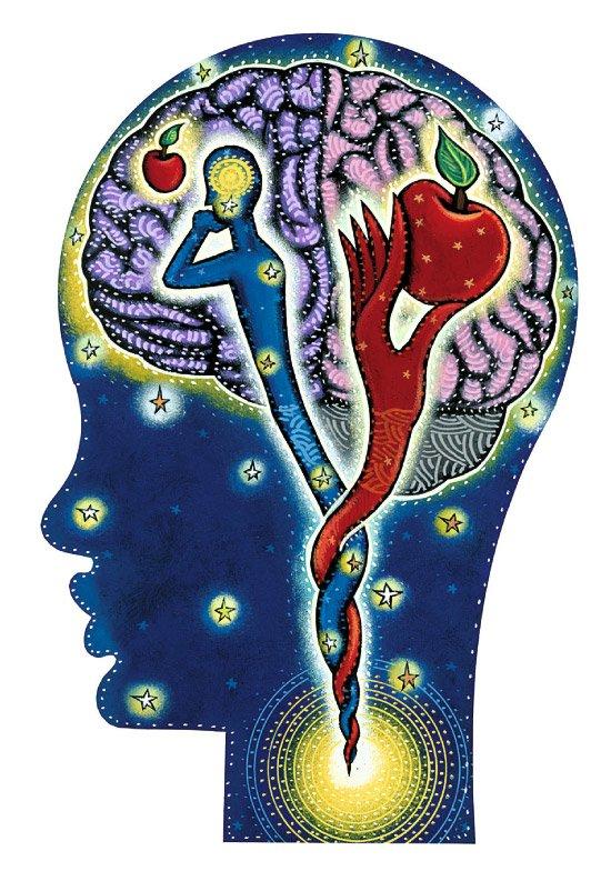 Podejmowanie decyzji: rozum czy emocje?