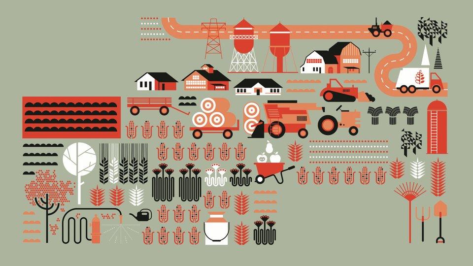 Jak uwolnić potencjał rynków wiejskich