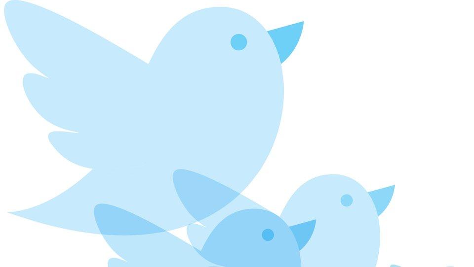 Tweety, które budują marki
