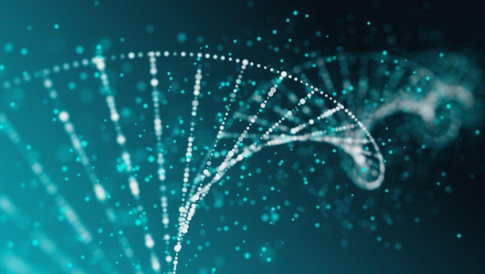 Rozwój wDNA firmy