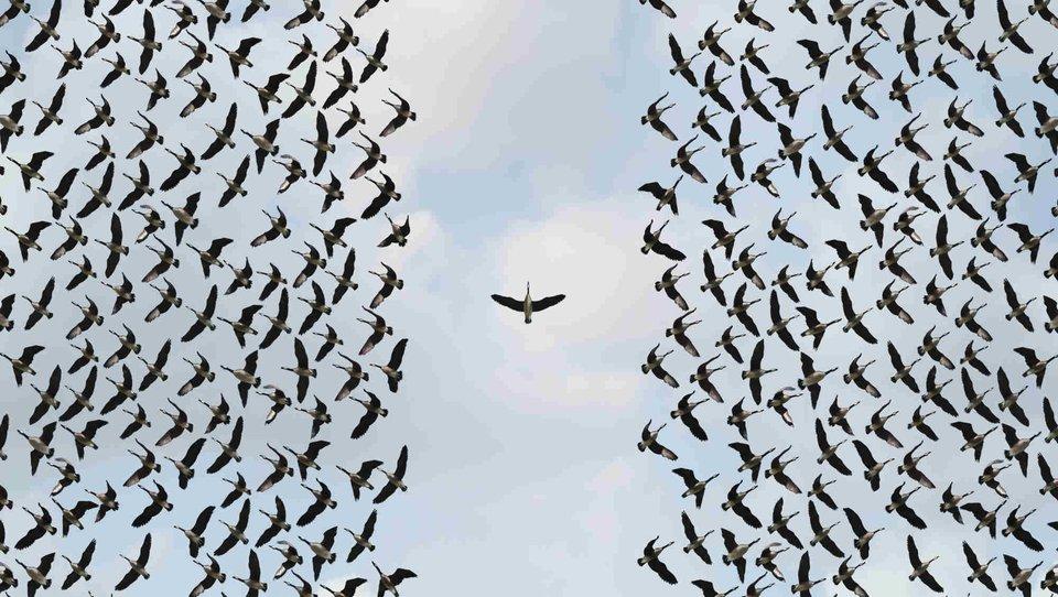 Wielcy liderzy działają celowo, anie reaktywnie