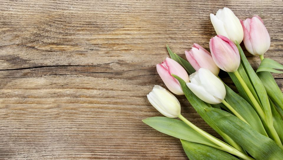 Czego potrzeba, aby przeprosiny były autentyczne?