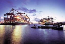 Upraszczanie złożonych procesów logistycznych