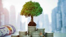 Budowanie wartości na rynku private equity