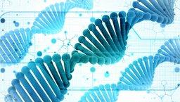 Innowacja irozwój wDNA firmy