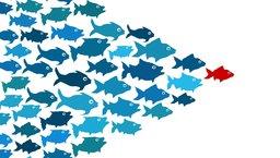 Trzy proste zasady zarządzania największymi talentami
