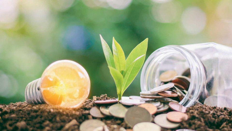 Jak polski biznes realizuje cele zrównoważonego rozwoju