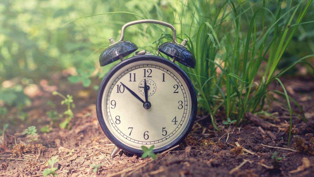 Monitoruj swój czas przez 30 dni. To, czego się dowiesz, może cię zaskoczyć