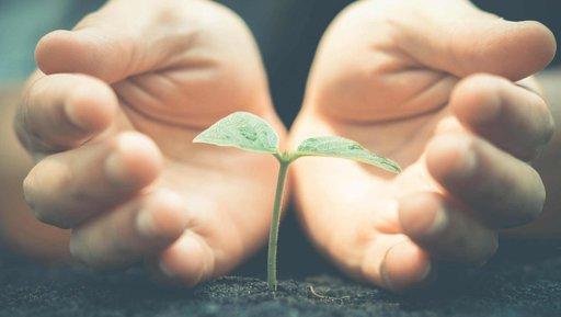 CSR: sposób na długofalowe odróżnianie się