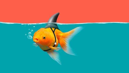 Deep fake: realne zagrożenie dla reputacji twojej firmy