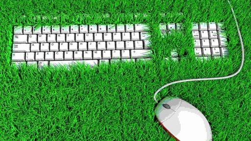 Biuro wspierające ekologiczne myślenie