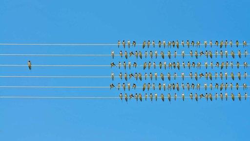 Osiem sposobów na zarządzanie zespołem wczasie izolacji społecznej