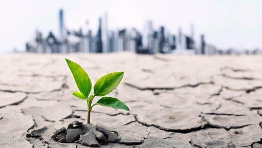 Co można kontrolować, kiedy klimat dla biznesu jest niekorzystny